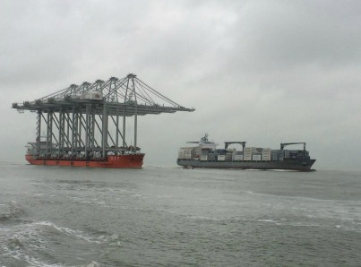 Rotterdam Port receives nine new cranes-0