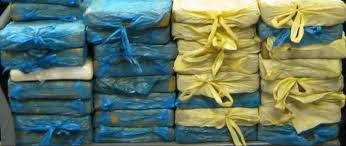Cocaine Seized in the U.S.-0